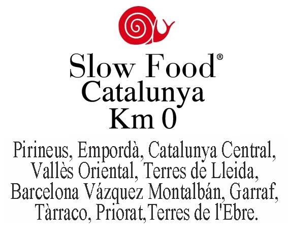 logo_SF_cat - copia